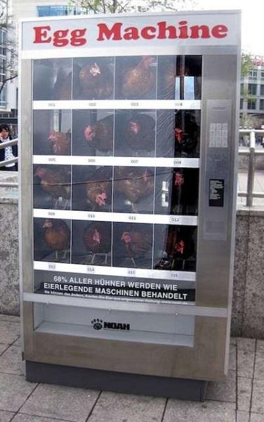 NOAH Egg Machine- псевдоторговый автомат, открытый в знак протеста