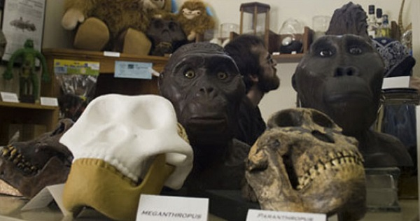 International Cryptozoology Museum в Польше