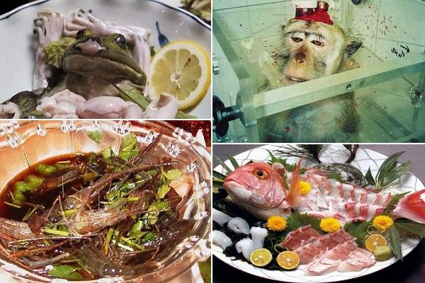 Блюда из живых животных