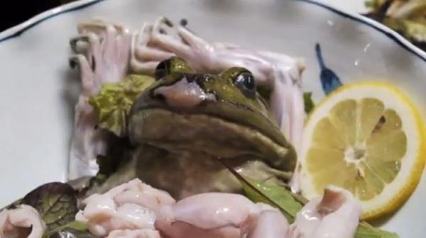 Frog Sashimi - блюдо из разделанной заживо лягушки