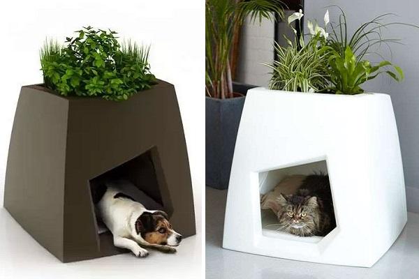 Niche Kokon - гибрид цветочного горшка и домика для мелких домашних животных