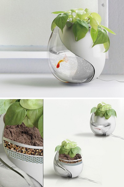 Цветочный горшок-аквариум от Sheng-Zhe Feng и Ling-Yuan Chou