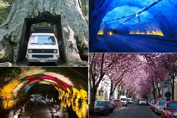 Необычные тоннели со всего мира