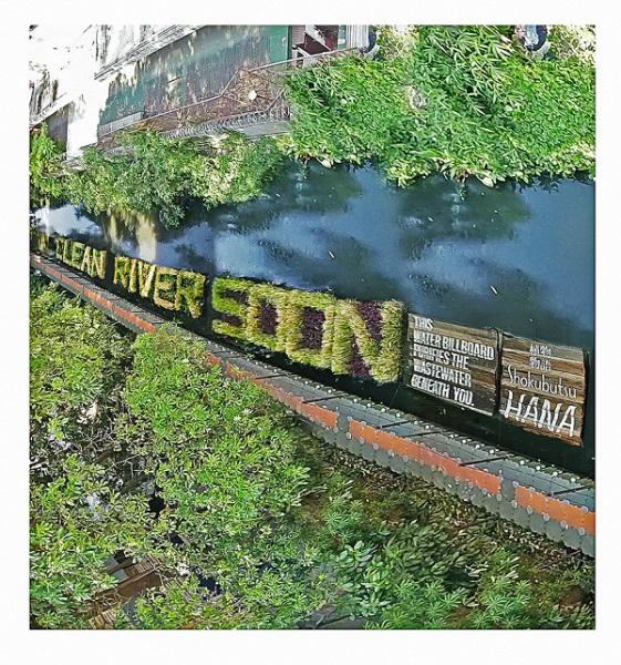 Билборд, очищающий воду.