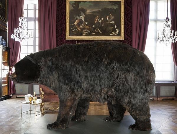 Художник, живущий внутри чучела медведя: творческий эксперимент Abraham Poincheval.