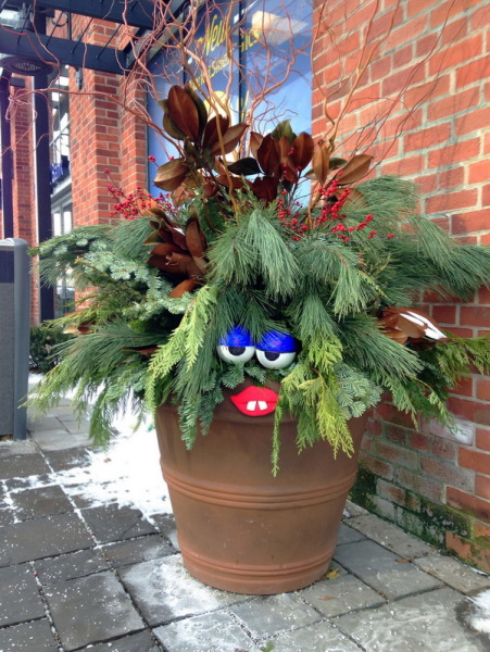 Новогодняя елка от Aiden Glenn