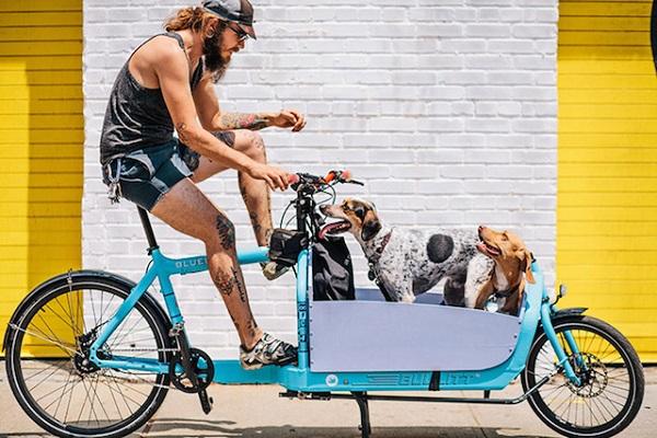 Велосипеды и их владельцы.