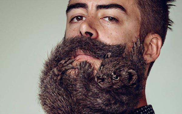 Живая борода в рекламе Schick.