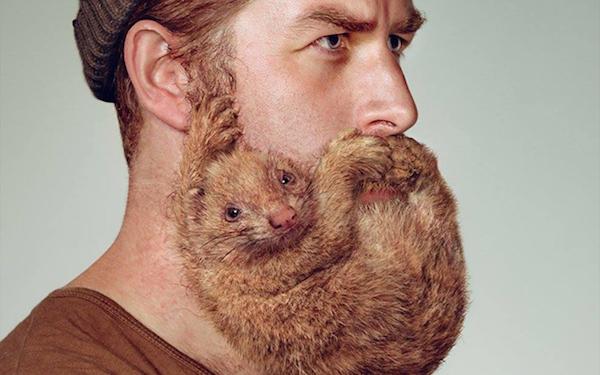 Необычные бороды в рекламе Schick.