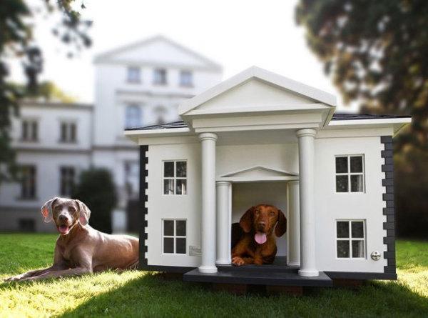 собачий домик – уменьшенная копия хозяйского жилья