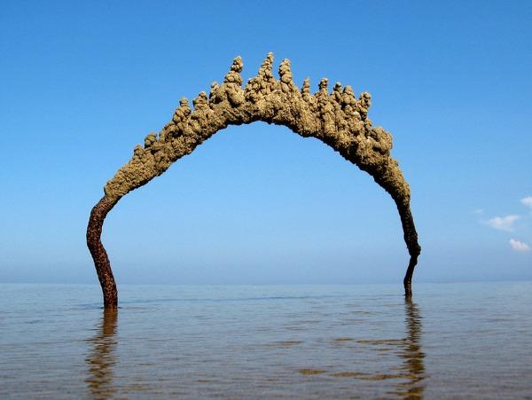 Скульптуры из песка, бросающие вызов законам гравитации.