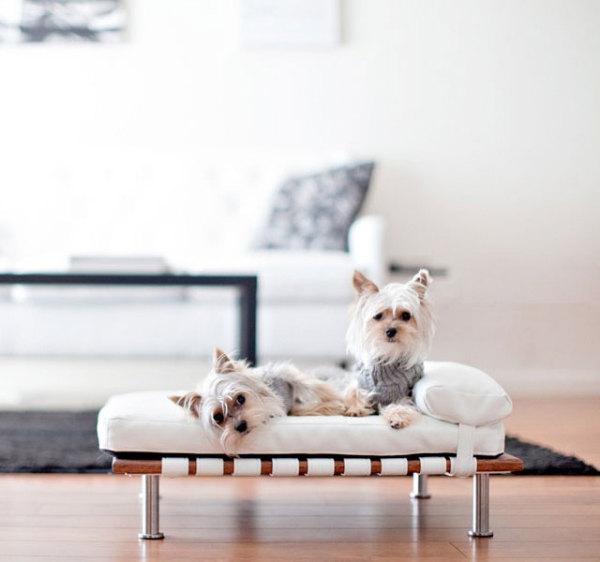 спальное место для гламурной собачки