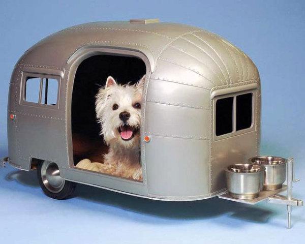 Собачья будка в форме вагона поезда