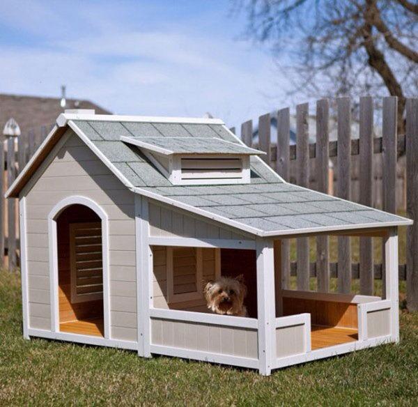 Картинки по запросу необычных домов и лежанок для домашних животных: