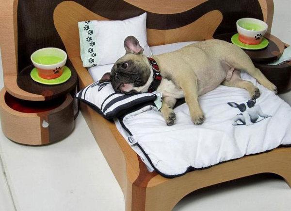 двуспальная кровать для собак