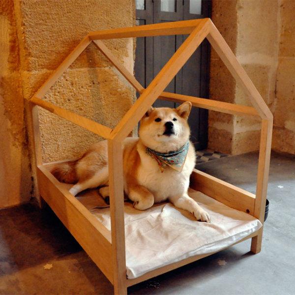 собачий домик