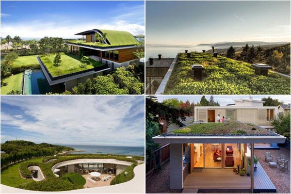 Жизнь под сенью трав: ТОП-20 экодомов с садами на крышах