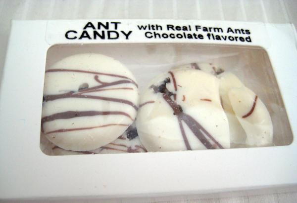 Гигантские муравьи в шоколаде