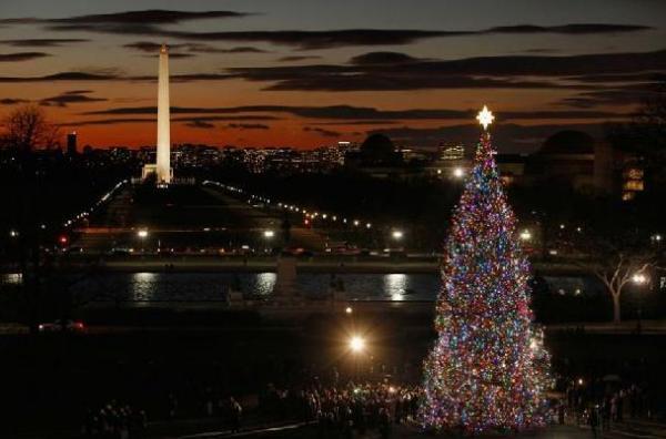 Різдвяна ялинка біля Капітолію у Вашингтоні
