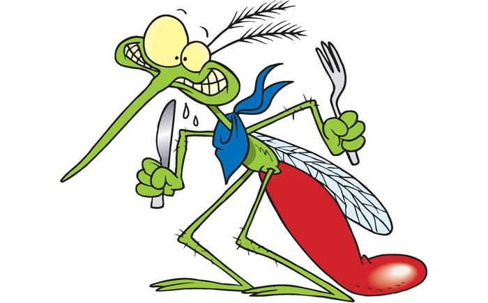 Комары – химические женоненавистники