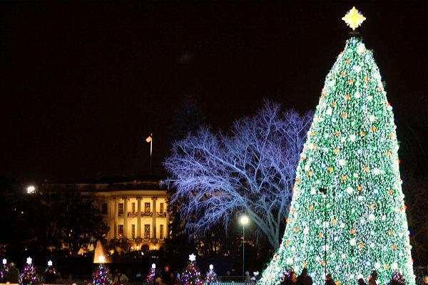 Национальная рождественская елка в Вашингтоне