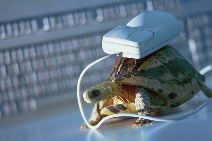 Интернет через телефон