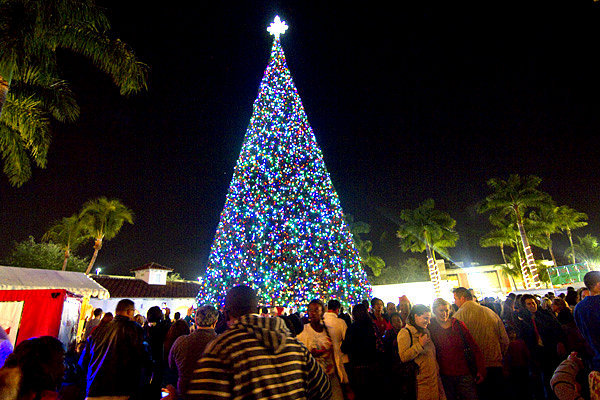 Рождественская елка в Делрей Бич (Калифорния)