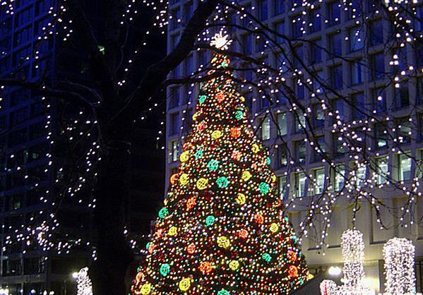 рождественская елка в Дейли Плаза (штат Иллинойс)