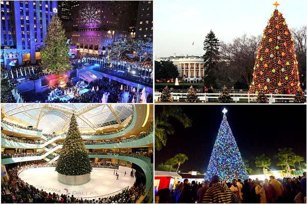 Топ-10 самых потрясающих рождественских елок США