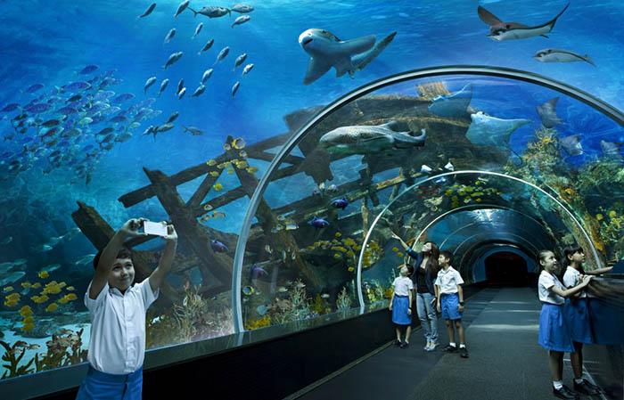 10 самых неимоверно красивых аквариумов в мире