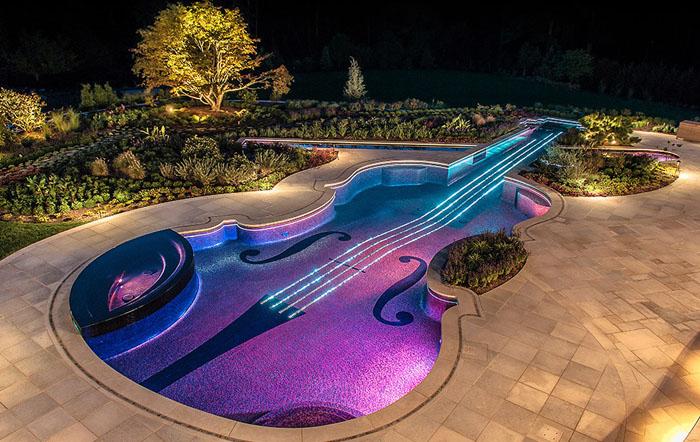 Бассейн-скрипка