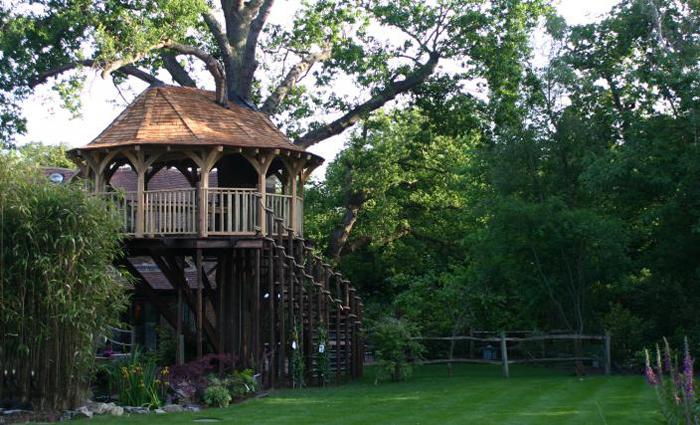 Дом-столовая на дереве