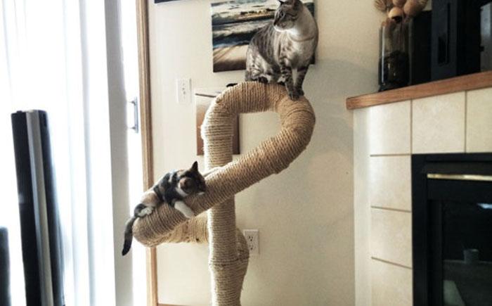 Cat-Furniture-Designs-11.jpg