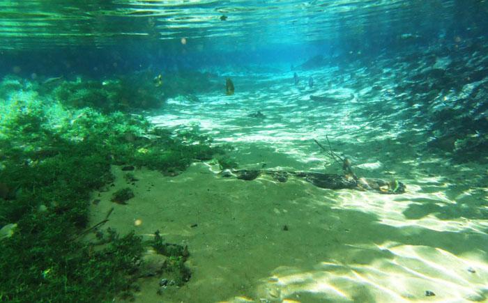 Река Прата (Серебряная река) – Бразилия