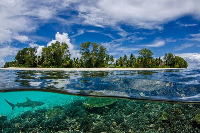 Сейшельские Острова  – Восточная Африка