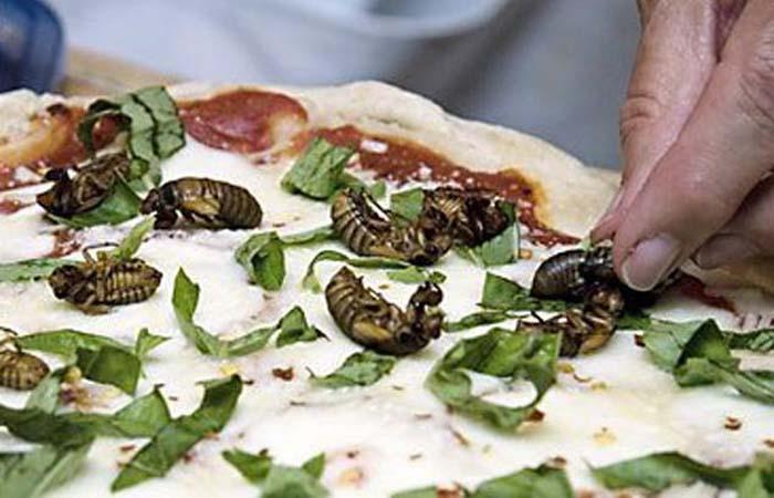 Пицца с хрустящими цикадами