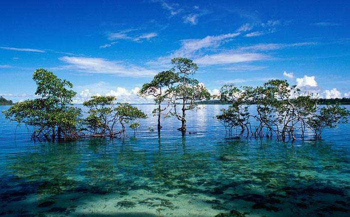 Северный Сентинельский остров - Андаманские острова
