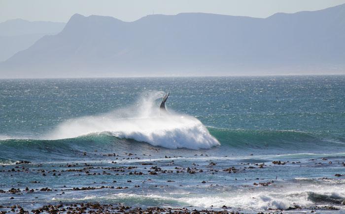 Пляж Гансбай – ЮАР