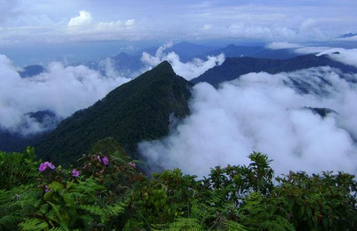 Поход в джунгли на Борнео