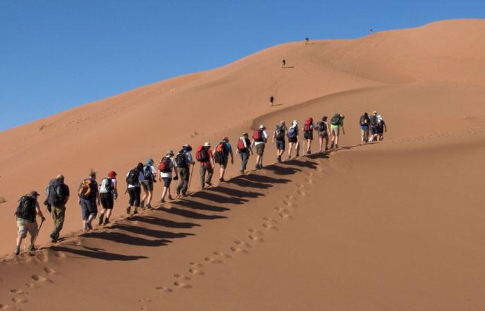 Поход в пустыню Сахара