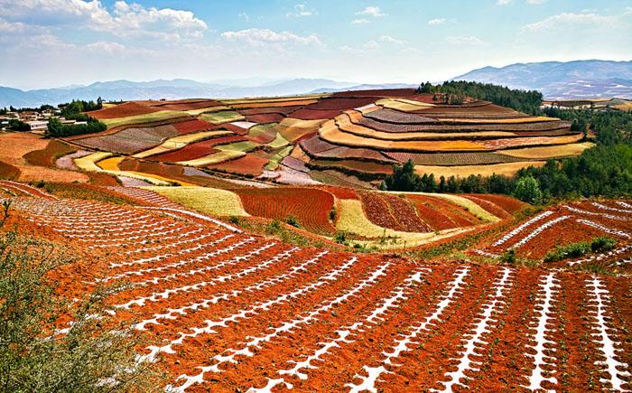 Яркие краски природы Дончуань