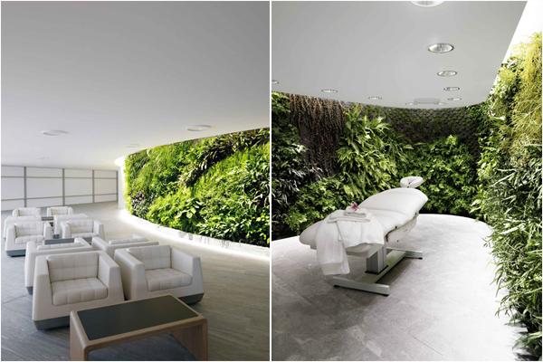 Вертикальный сад в зале ожидания Qantas, Сидней