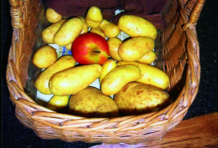 Яблоки и картофель – друзья навек
