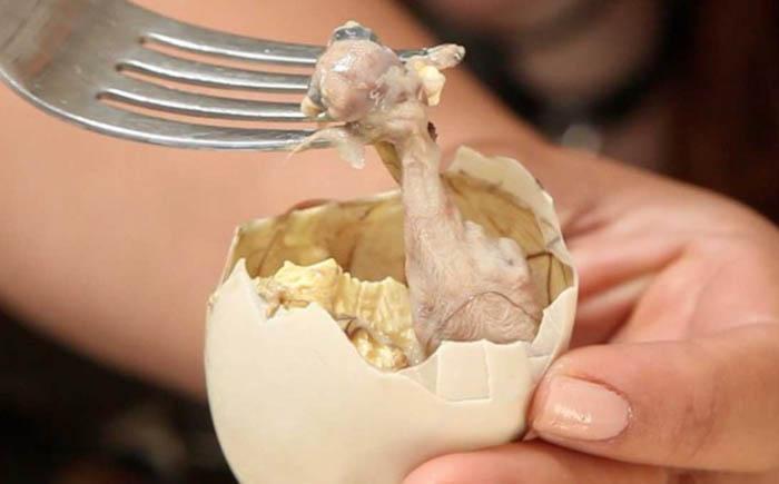 Эмбрион утки в яйце