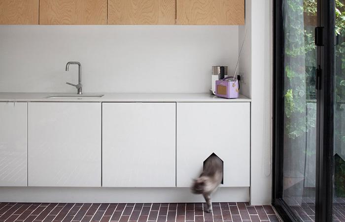 Держите кошачий туалет в одном месте