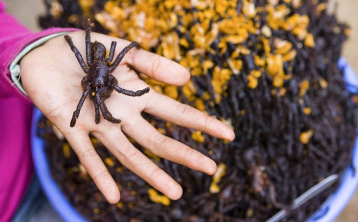 Жареный тарантул