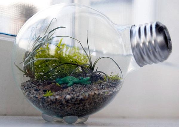 Террариум из лампочки