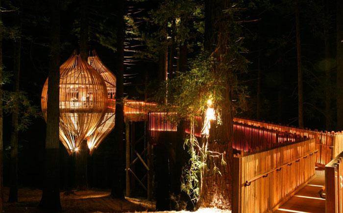 Ресторан Treehouse, Новая Зеландия