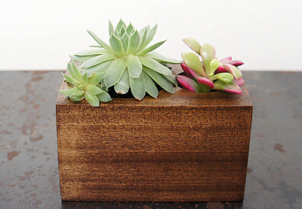 Цветочный вазон от Moss + Twig