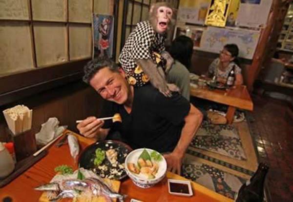 Ресторан с обезьянами (Япония)